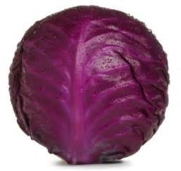 1 low in fat red cabbage is low in calories and is a rich source of vitamins and minerals