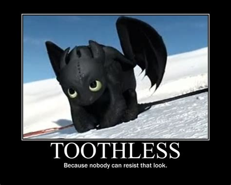 Dragon Memes - toothless memes school of dragons how to train