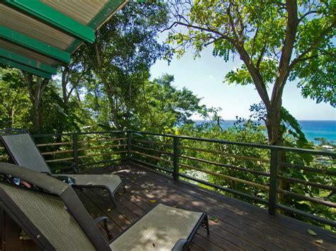airbnb hawaii whoa you can rent a sweet tree house on airbnb steve aoki