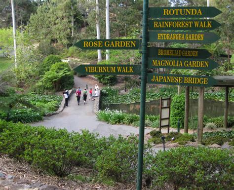 mount tamborine botanical gardens things to do on tamborine mountain witches falls