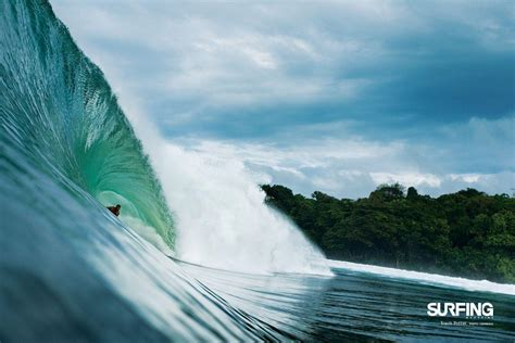 wallpapers for desktop themes surfing desktop backgrounds wallpaper cave