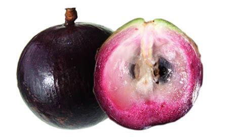 Aple Syar I caimito apple tree purple variety