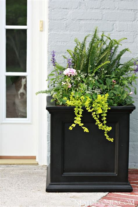 front door planters front porch curb appeal