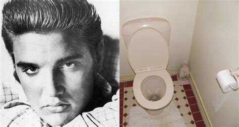 elvis toilet the embarrassing deaths of 5 of history s most famous figures