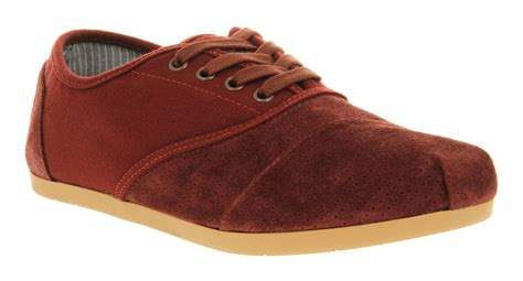 mens toms toms cordones lace burgundy cord casual shoes ebay