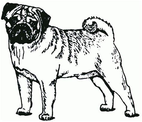 boxer dog clipart cliparts