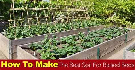 best soil for raised beds soil for raised beds how to make the best raised bed soil