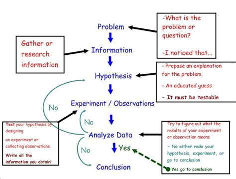 Scientific Method Study Guide Worksheet by 7th Grade Everitt Middle School Mr Williams Science