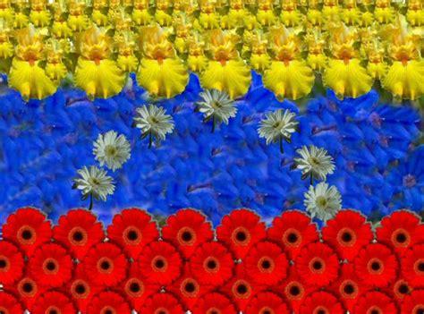 imagenes de venezuela libre volver 225 venezuela a perder la oportunidad de ser libre