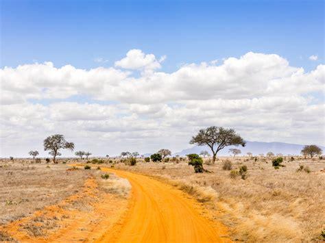 safari road  kenya savannah landscape photography