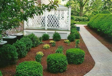 landscaping photos landscaping d s landscaping