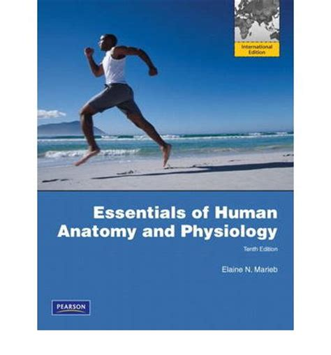 essentials of human anatomy physiology plus mastering a p with pearson etext access card package 12th edition essentials of human anatomy and physiology with essentials