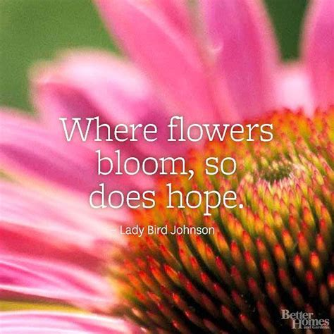 Flower Quotes 17 Best Flower Quotes On Wednesday Wisdom