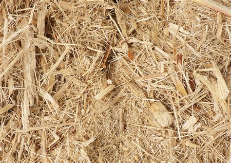 How To Make Paper From Sugarcane Bagasse - make biomass pellets from sugarcane bagasse wood pellet line