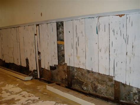 Nine Steps To Take Before Finishing Your Basement In Finish Basement Walls