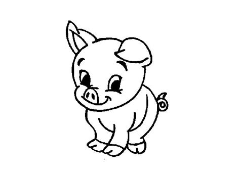 baby pig colouring pages clipart miscellaneous