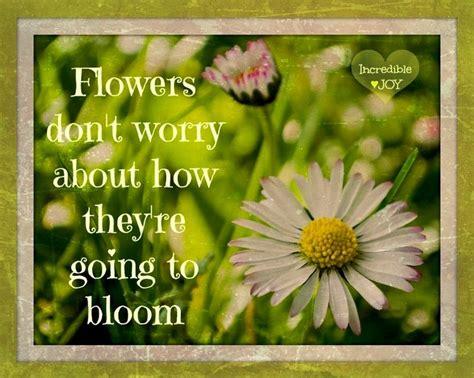 Flower Garden Quotes Flower Garden Quotes Quotesgram