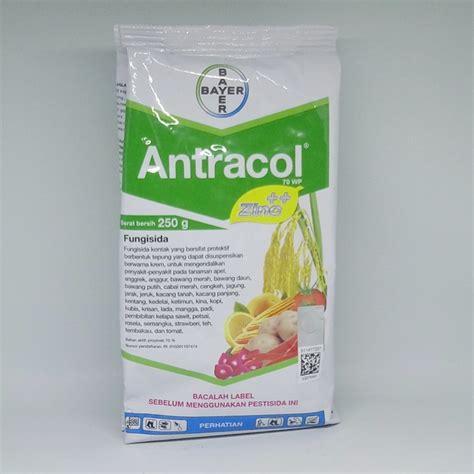 Fungisida Antracol fungisida antracol 70wp 250 gram bibitbunga
