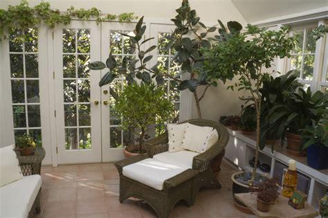 plants in home dicas para cuidar do seu jardim no inverno jardim do mundo