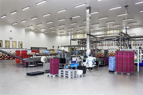 case study energy efficient warehouse lighting elba