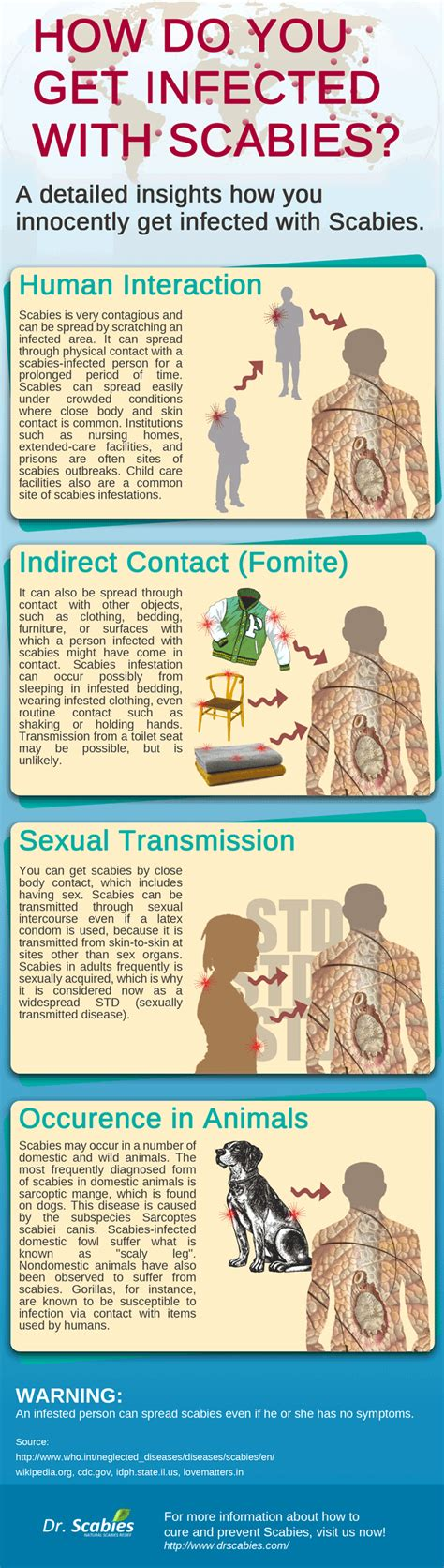 how do you get infected with scabies infographic best