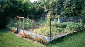 Go back gt gallery for gt small vegetable garden fencing
