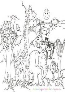 safari animal coloring pages bestofcoloring com