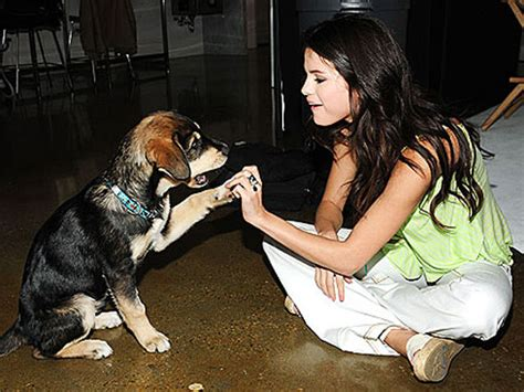 selena gomez puppy actresses with their adorable pets filmibeat