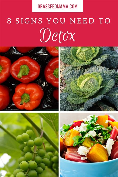 Signs I Need To Detox My by 8 Signs That Your Needs To Detox Grassfed