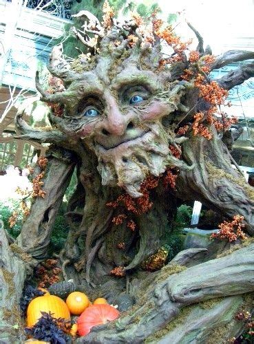 art  kim graham art en bois arbres etranges art paysage