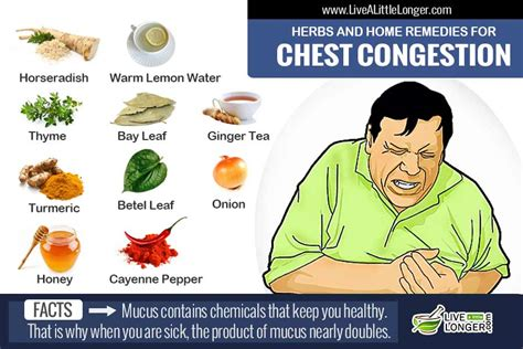 12 home remedies for chest congestion relief