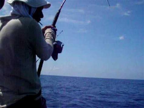 Pancing Tarik pancing laut dalam ikan seroncing 8kg oilrig di tawan