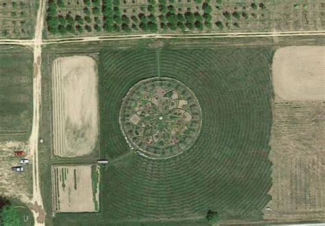 shelby michigan lavender maze giant lavender labyrinth is a roadside wonder storia me