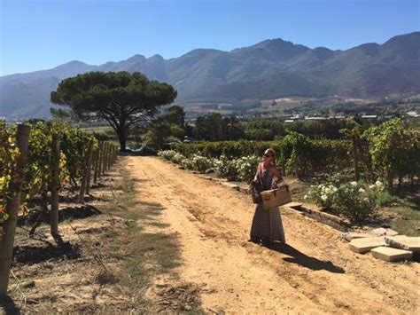 Garden Route Itinerary Ideas Driving Itinerary Of The Garden Route South Africa Just Globetrotting