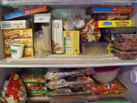 Freezer Untuk Frozen Food nunca metas estos alimentos al congelador