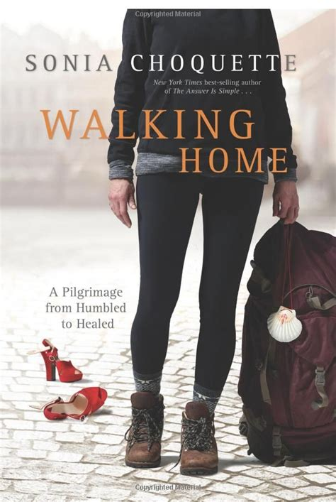 the reluctant pilgrim an incomplete guide to 216 best images about camino books on