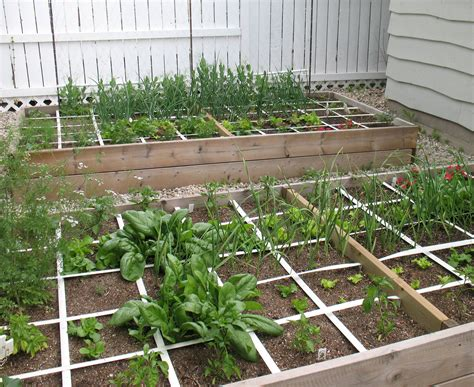 Square Foot Gardening Is Anything But Square Gardeninggrrl Square Foot Vegetable Garden