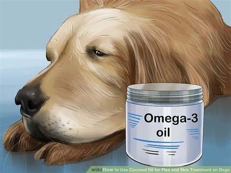 what to use on dogs skin can i rub coconut on my dogs skin diydry co