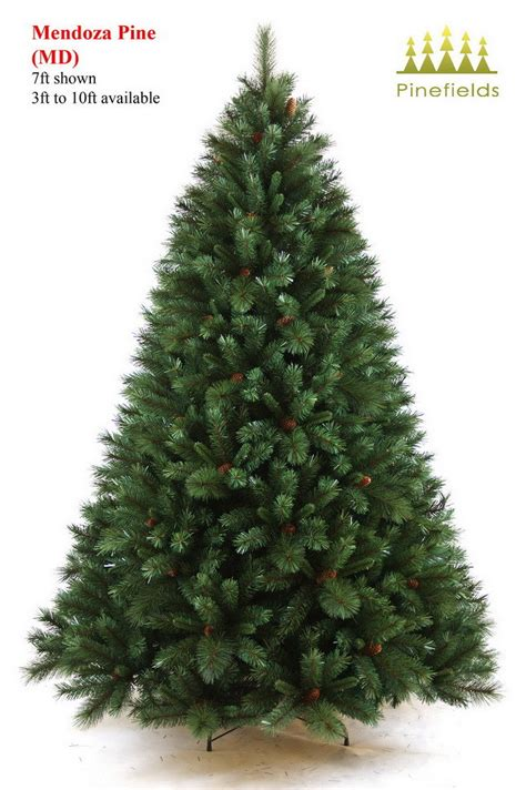 kiefer als weihnachtsbaum china tree mendoza pine china