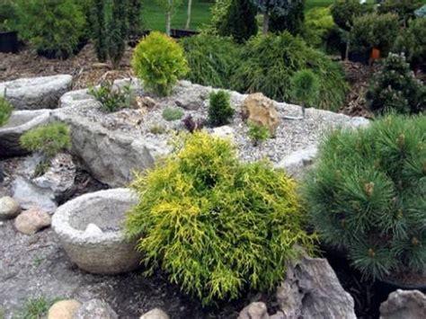 Plants For Sunny Rock Gardens The Interior Design Rock Garden Plants Sun