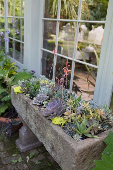easy diy gardening projects if you don t a garden - How To Make A Succulent Container Garden