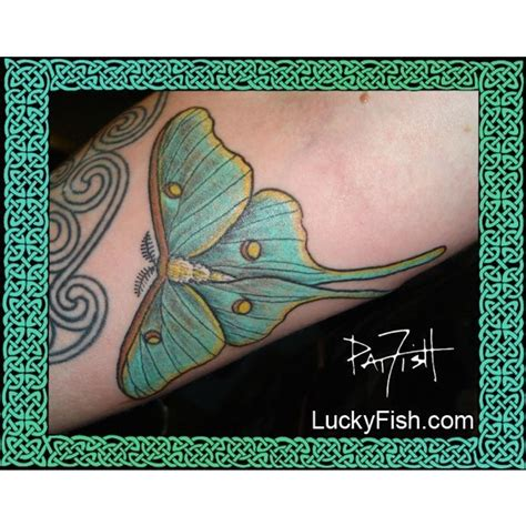 pat fish tattoo moth luckyfish inc and santa barbara