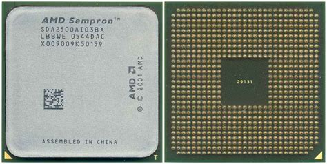Amd Sockel 754 by Processore Cpu Amd Sempron 1 6ghz Omaggio Imperdibile Ebay