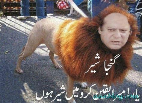 nawaz sharif latest funny pictures  fun  photo