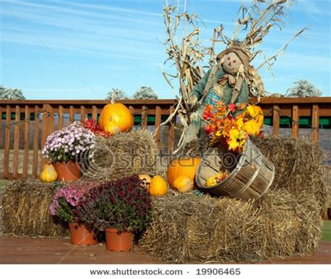 fall hay bale decorating ideas hay bales in the fall fall