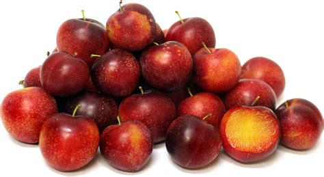 Cherry Plumb by Cherry Plums Information Recipes And Facts