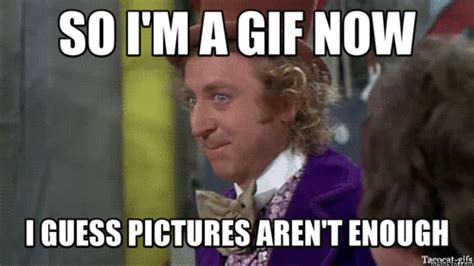 Animated Gif Meme Maker - wonka meme 2 0 gifs