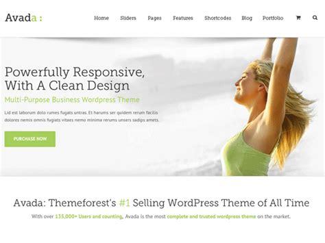 avada theme customization customize the avada wordpress theme with csshero