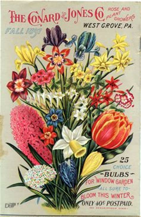 flower garden catalogs 1000 images about vintage seed packets on