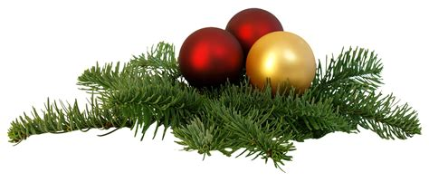 christmas branch png transparent image pngpix